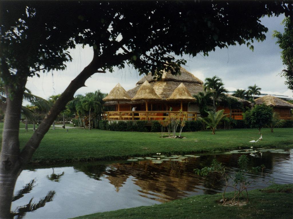 Www Mydevice It Miami Beach Santo Domingo Punta Cana New York 1995